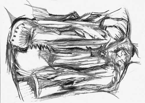 Renate_Reisky_js_01_2008_pencil_on_paper_29-7x42